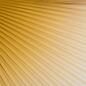 Pleated fabric HONEY Ombre
